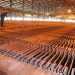 INSIGHT INTO THE COPPER PRICE