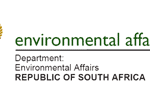 ENVIRONMENTAL AUDITS IN A POSITIVE LIGHT