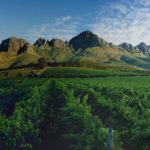 WELCOME TO LOURENSFORD WINE ESTATE