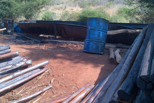 INCREASED CHALLENGES CREATED BY ILLEGAL TIMBER TREATERS