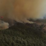 CUTTING-EDGE TECH HELPS PREVENT CATASTROPHIC FOREST FIRES