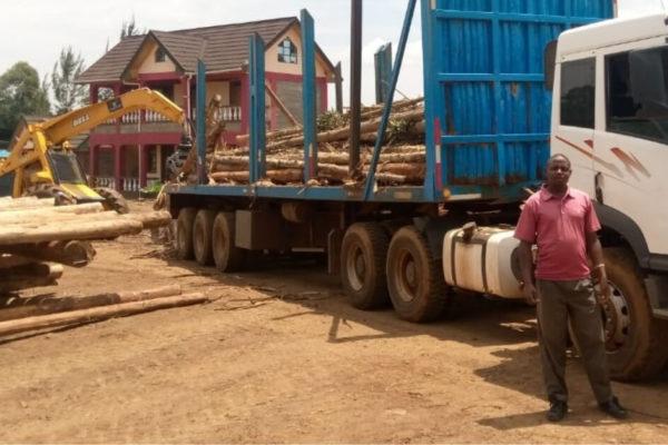 Lakewood Timber Treatment