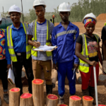 FIRST TIMBER TREATMENT PLANT IN SIERRA LEONE SIGNS UP WITH DOLPHIN BAY