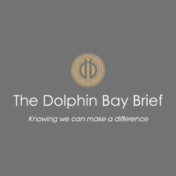 Dolphin Bay Brief
